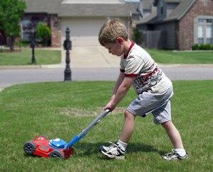 lawn-mow